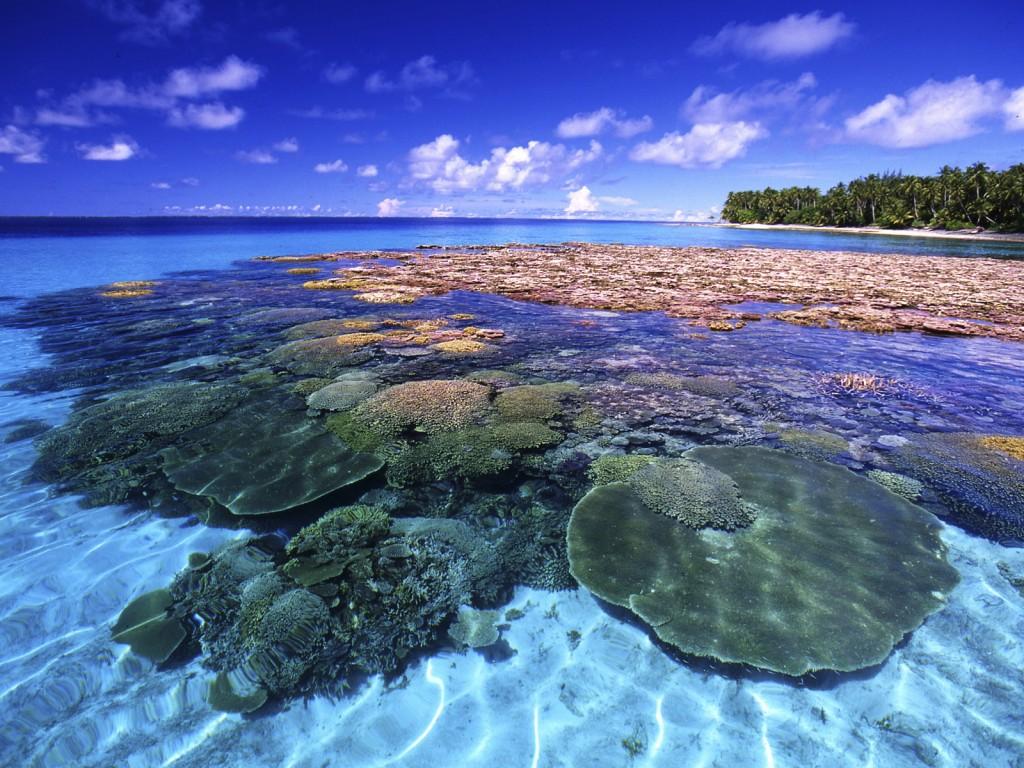 Marshall Islands company incorporation